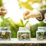Plum Announces Equity Crowdfunding Campaign on Seedrs